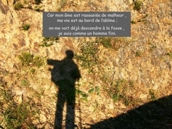 Car+mon+âme+est+rassasiée+de+malheur+,+ma+vie+est+au+bord+de+l'abîme+;.jpg