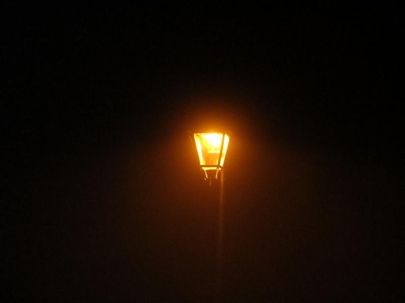 belle-lueur-dans-la-nuit-6d785015-c2aa-45aa-b716-c2f04f90ad85.jpg