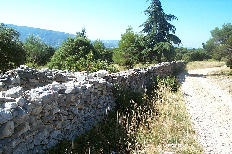 Mur_de_la_peste (1)
